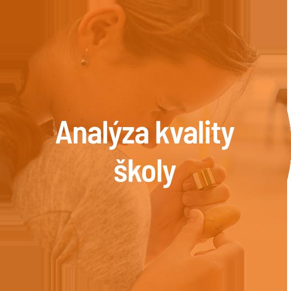 nastroj-6-analyza-skoly-b